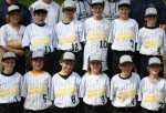 Little League: Diamond Resorts wins 9-3 over Morgan Stanley