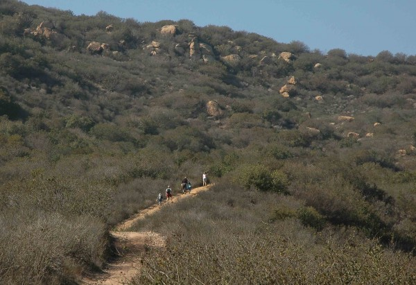Hikers on the Sycamore Canyon Trail enjoy open space in Laguna Canyon.
