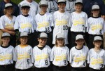 s4  little league DiamondResorts9-3WIN