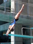 Local Diver Places 4th