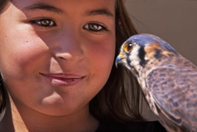 A young girl goes nose to nose with a kestral falcon.