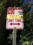 No Trees Any Time