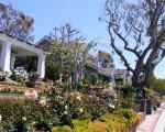 garden DSCF2042