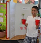 Students Showcase the Scientific Method