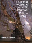 Ancient Tree Seeds a Newly Minted Author