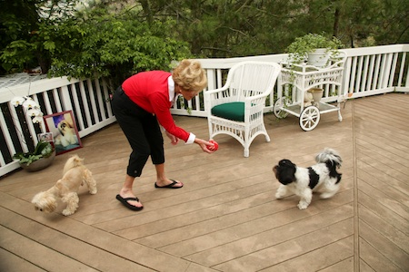 Longtime resident Mona Roberts at play on her deck with her two surviving dogs; a coyote snatched pet. another Photo by Jody Tiongco