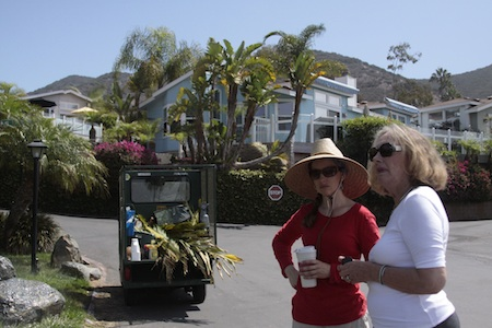 Landscape artist Eileen Young, left, confers with resident association president Daga Krackowizer within the well-maintained grounds of Laguna Terrace Park, whose owners plan to sell the property.
