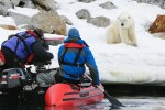 Arctic Film Collects Awards
