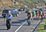 Animal services officer Joy Falk on Tuesday escorting John Sears and friends along Coast Highway. Photo by Mike Bless