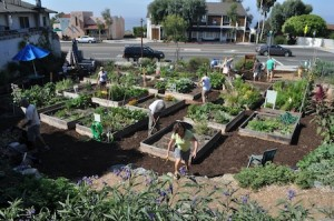 Conservancy speaker describes the results of stitching together a patchwork of plots.