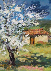 """Cherry Tree By The Cabanon,""   by Maria Bertran, is featured at Pacific Edge Gallery."