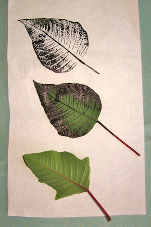 Inked leaf transfers.