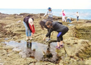 LOCA offers a tidepool tour and art class on Sunday, March 17.