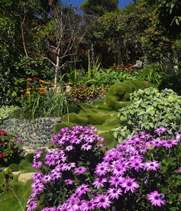 Jorja Puma's award-winning garden serves as venue for a LOCA benefit reception.