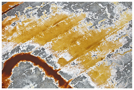 """Festival board member and exhibitor Tom Lamb's """"Orange-Yellow"""" photograph is among the works displayed at the bank."""