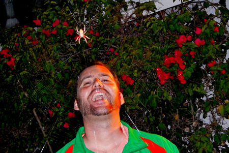 Brent Goodman finds even spiders are a laughing matter.