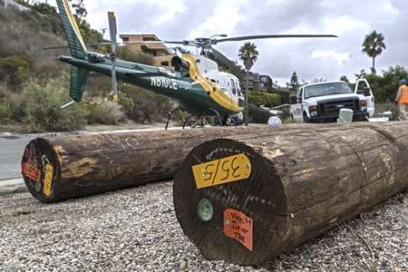 Flamingo Road provided the staging area last October for Edison to replace utility poles. Laguna's council Tuesday considers hiring a consultant to plan for a citywide program to put them all underground. Photos by Mitch Ridder