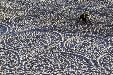 A small portion of artist Jim Denevan's sand drawing at the north end of Main Beach, not long before sunset.