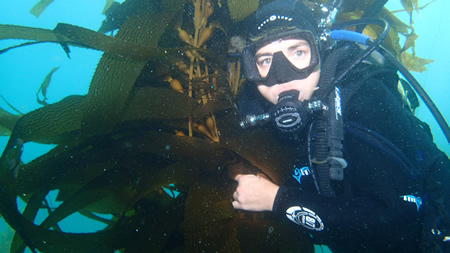 Biologist Nancy Caruso with kelp-munching urchins in Shaw's Cove two years ago.