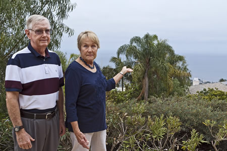 Jim and Mimi Healey take exception to a Laguna Beach neighbor's tree that has grown into their view. A new ordinance may provide a remedy.