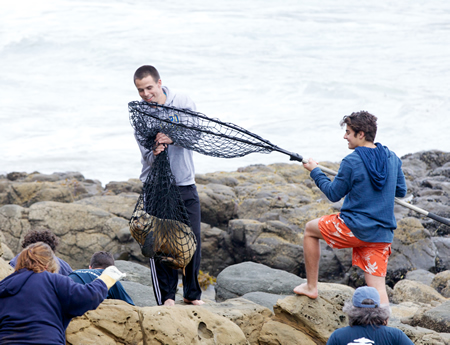 El Toro High School students Max Lynd and Isacc Furnari assist the Pacific Marine Mammal Center in hoisting a sea lion, rescued from the rocks at Crescent Bay, in March 2014.