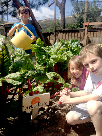 Children in the Anneliese's School garden.