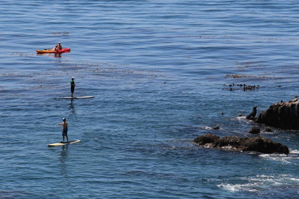 Paddlers near Crescent Bay. Photo by Charlie Craig