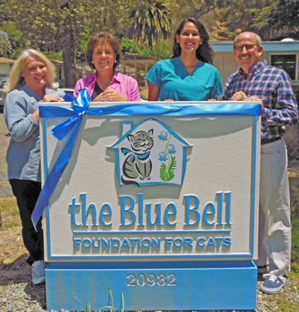 : From left, Blue Bell supporters Annie Pastorkovich, Susan Hamil, Stephanie Farrell and Jeff Zakaryan show off the organization's new sign for its facility in Laguna Canyon.