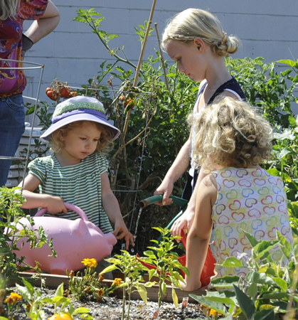 Youngsters tend sprouts in a community garden.