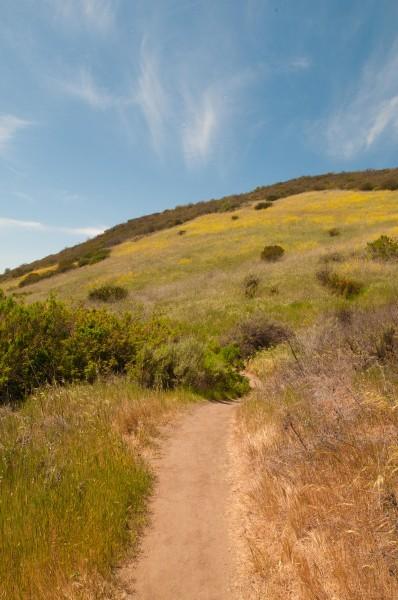 Deer Canyon Trail