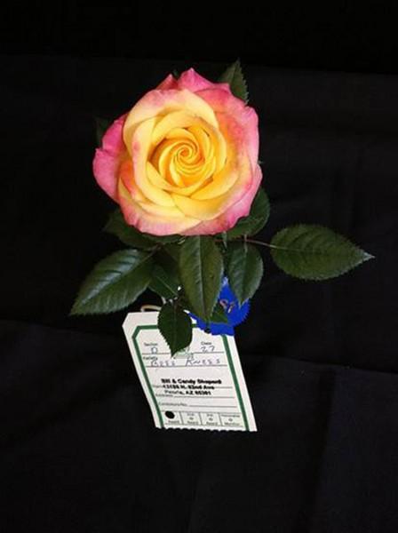 3 datebook rose-1
