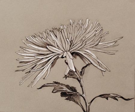 Instructor Hedy Buzan's artwork.
