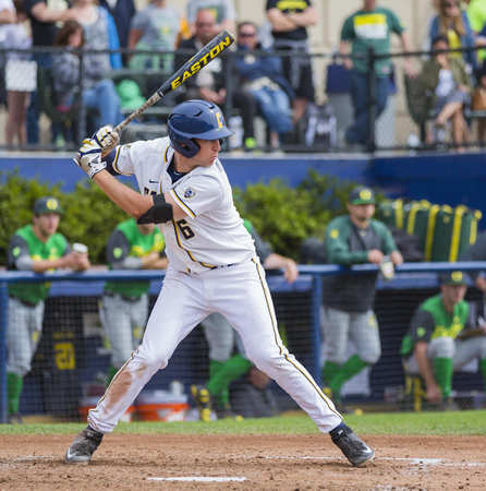 Cal first baseman Chris Paul at the plate against Oregon last week.Photo courtesy of GoldenBearSports.com