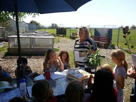 Students learn about plants that Monarch's need to survive