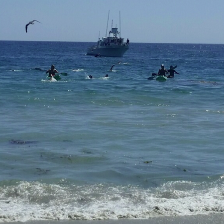 The last swimmer strokes for landfall on Main Beach while The Outrider remains outside the surfline. Photo by Elizabeth Hale.