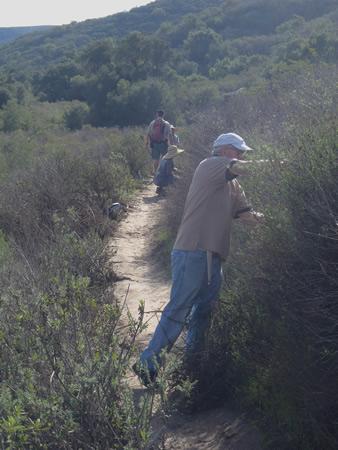 Robert Holsinger cuts brush back on Lizard Trail off Laurel Canyon in Laguna Coast Wilderness Park.