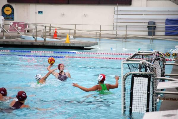 laguna beach local news girls water polo 25 2 4 0 league champions