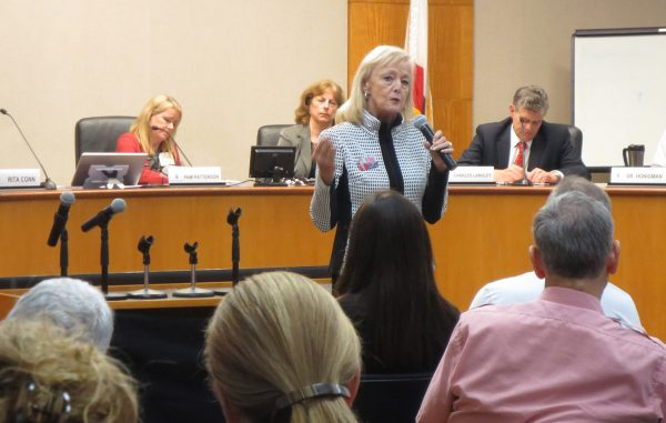 Congressional candidate Susan Savery addresses the audience. Photo by Marilynn Young