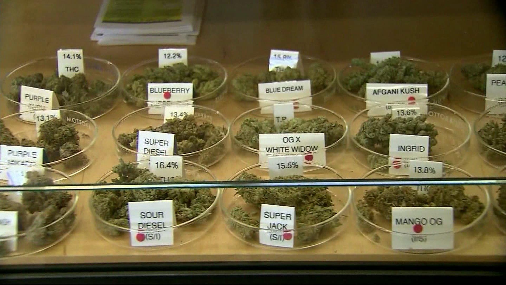 A selection of medical marijuana.