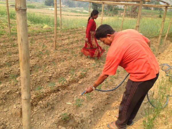 Nepal villagers tending crops.