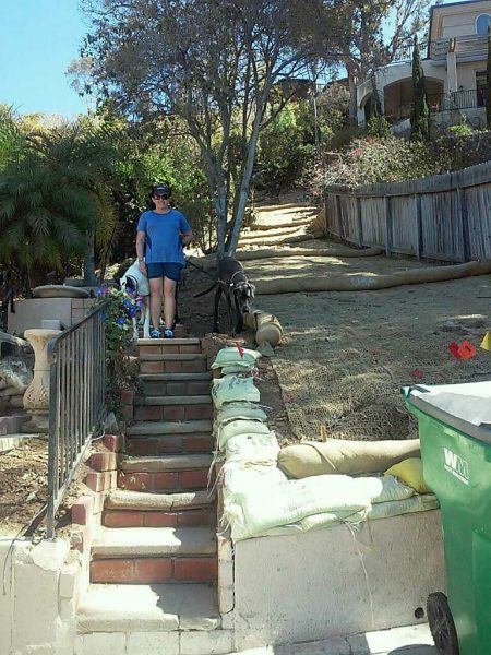 """Melissa Williams from the Woods Cove neighborhood walks her dogs up the """"secret stairway"""" that abuts the approved Ruby Street driveway site for the Hensley house project."""