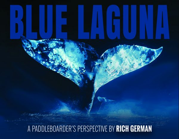 2-write-stuff-bluelaguna_frontcover