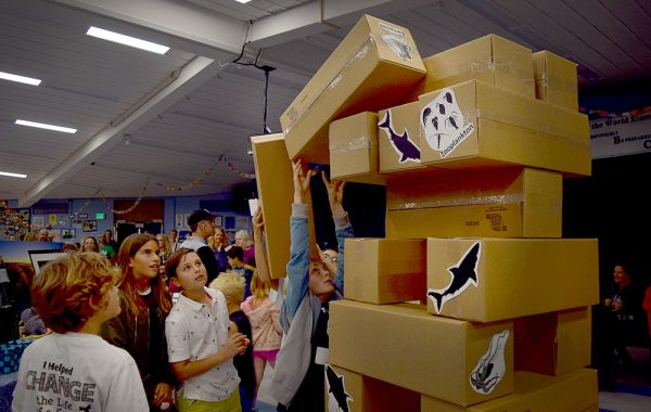 Students stack boxes as part of a fundraiser for the Pacific Marine Mammal Center during a night of activities by the school's Ocean Awareness Club.