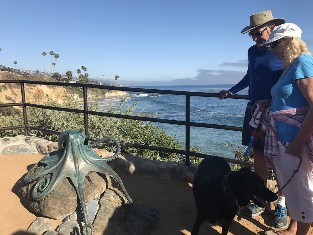Visitors check out the newest works of public art in Heisler Park, an octopus sculpture and bench above Diver's Cove.