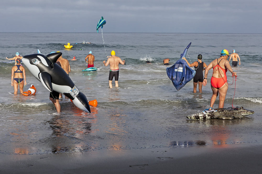 "The Oak Street Swimmers set out Saturday, June 17, with their favorite inflatable pool animal on their annual ""animal swim,"" a 1.65-mile loop between Oak Street Beach and the Main Beach buoy that kicks off their summer swim season."