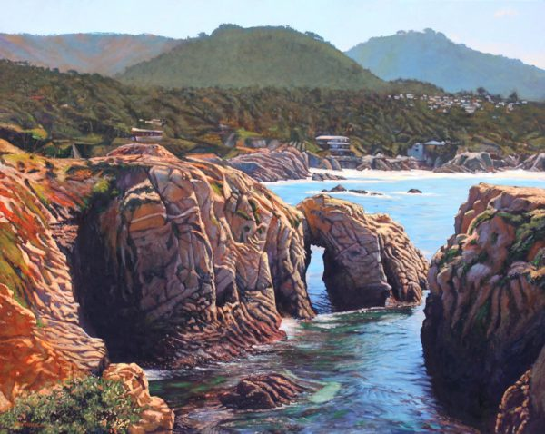 Swimm's winning work depicting Point Lobos.