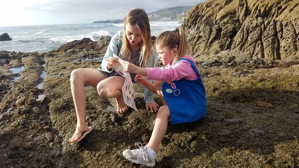 Recent tidepool visitors Bailie, left, and Avery Stuart visiting from Calabasas.