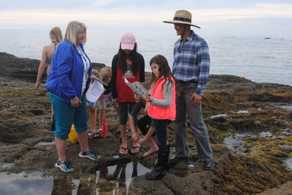 Docents help preserve tidepool habitat by educating beach visitors.