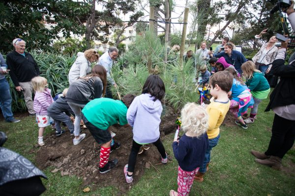Boys and Gitls Club members took part in Laguna's first Arbor Day celebration. Photo by Donee Q
