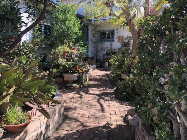 Willa Gupta's eclectic garden is part of the South Laguna garden tour.